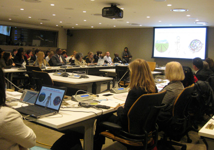World Health Day - UN April 7, 2015 - Audience - Slide Presentation