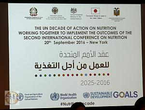 slide-un-decade-of-action-on-nutrition